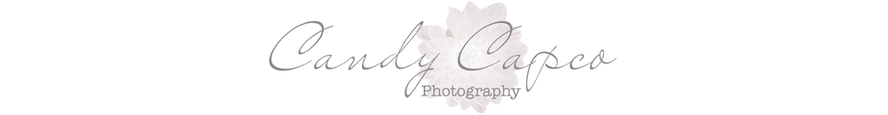 IMAGE: http://www.candycapco.co.nz/wp-content/uploads/p4/images/logo_1335317027.jpg